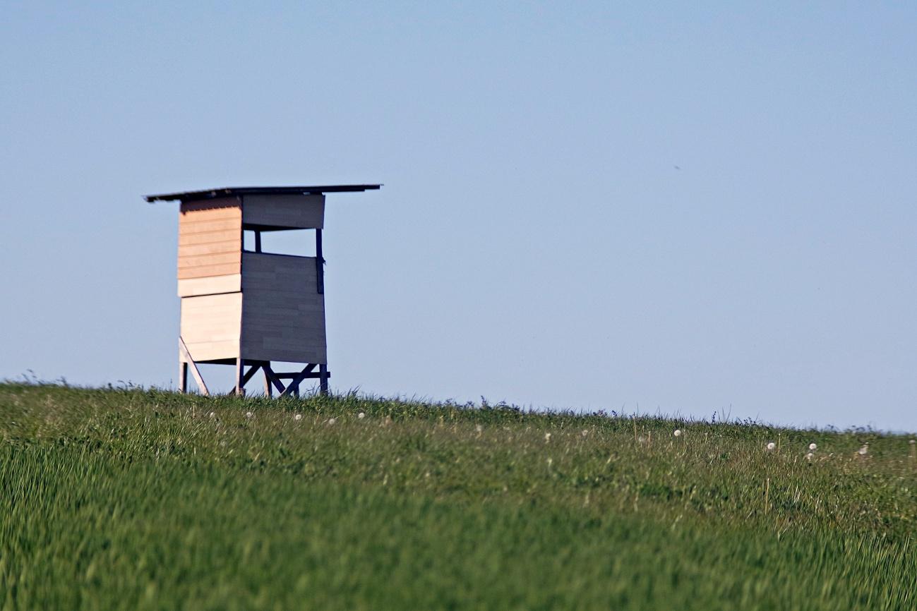 Zum Tagesabschluss — Tiny house, weniger als Minimalismus