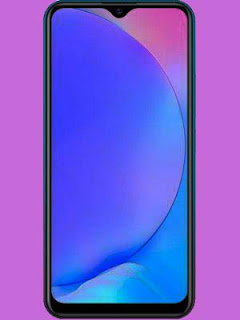 Vivo Y17 Price and Specification