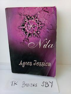 Sinopsis Novel Agnes Jessica Nila