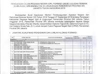 Pengadaan CPNS Pemerintah Provinsi DKI Jakarta Tahun Anggaran 2019