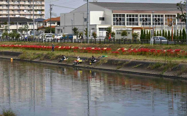 岸辺に咲き連なる彼岸花を背にして釣りをする人々