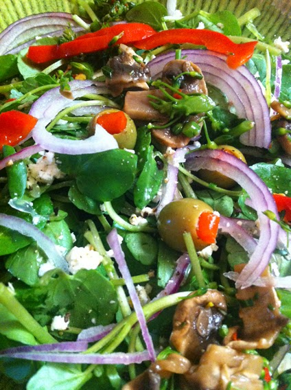 Wild watercress salad with red onions, feta, olives, red peppers, broccolini and mushrooms