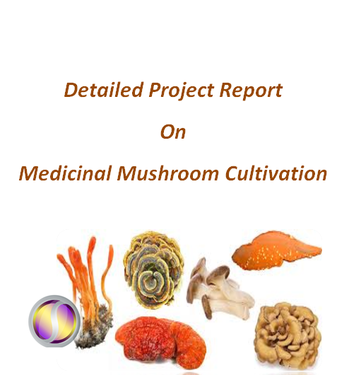 Project Report on Medicinal Mushroom Cultivation