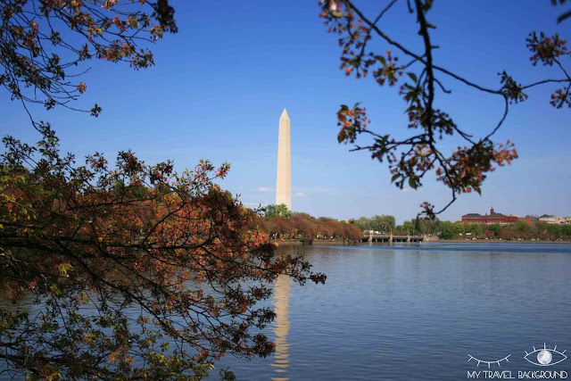 My Travel Background : 12 lieux à visiter à Washington D.C. - Tidal Basin