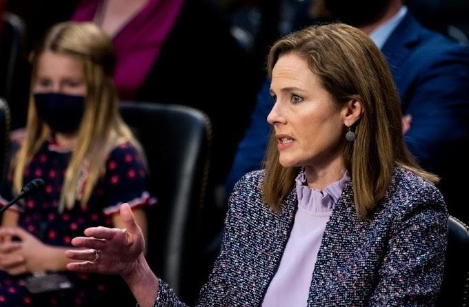 The 2020 Supreme Court Hearing: Precedents and Stare Decisis