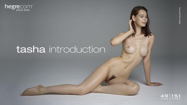 [Art] Tasha - Introduction - idols