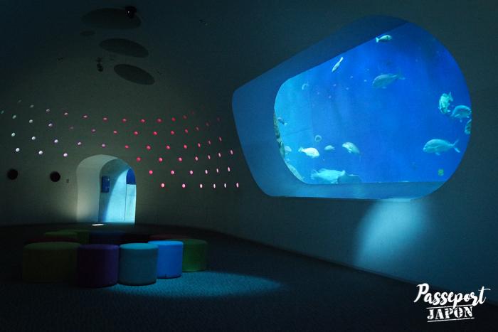 Espace détente et aquarium, Umi Tamago, Oita