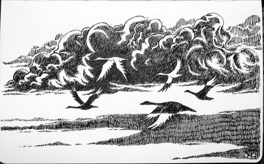 03-Bird-migration-Kimmo-Oja-www-designstack-co