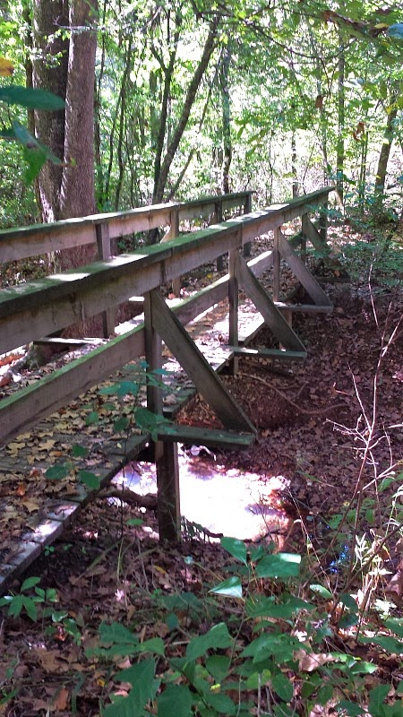 Sinking Stream Trail at Hobbs State Park in Rogers, AR