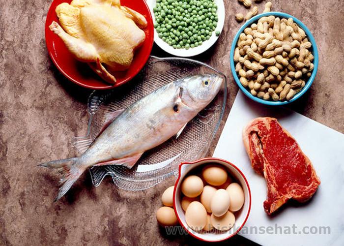 Sumber Makanan Yang Mengandung Protein Tinggi Kualitas Terbaik