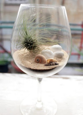 wine glass with terrarium