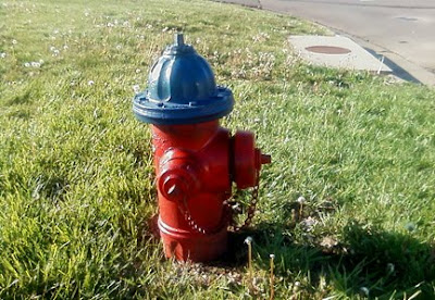blue top fire hydrant