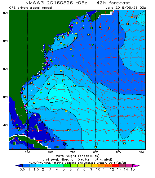 Tropical Storm Bonnie Wave Model