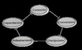 Conexión,conversión,capacitación,dicipulado