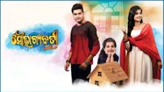 Zee Sarthak Odia Serial