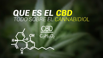 Beneficios cannabidiol CBD legal