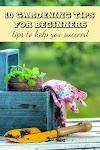10 Gardening Tips For Beginners #Organic_Gardening
