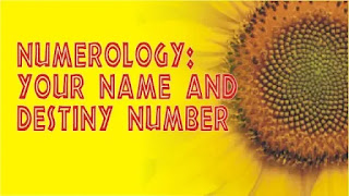 NATURE OF YOUR  NUMBER