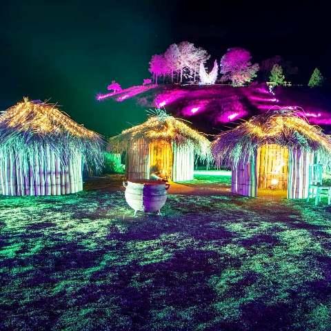 Ocas iluminadas durante a Festa das Luzes