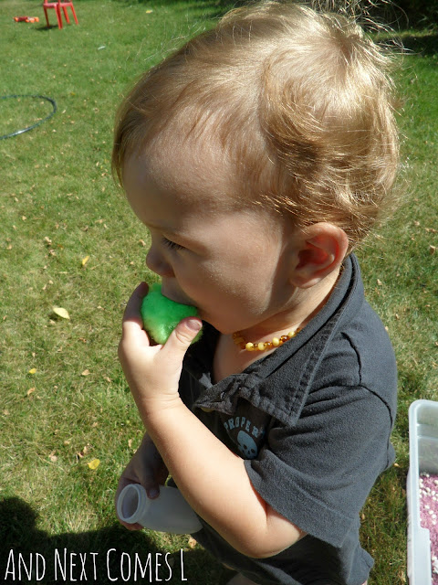 Toddler mouthing a large green pom pom as part of a Gruffalo sensory activity