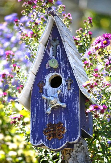 blue+house Painted Bird Houses Designs Ideas on home office design ideas, painted bird house craft, painted wood bird house, painted bird house with cat, computer nerd gift ideas, painted wood craft ideas, painted dresser ideas, pet cool house ideas, painted furniture, painted red and white bird, painted owl bird house, jewelry designs ideas, painted bird house roof, painted decorative bird houses designs, painted gingerbread house craft,