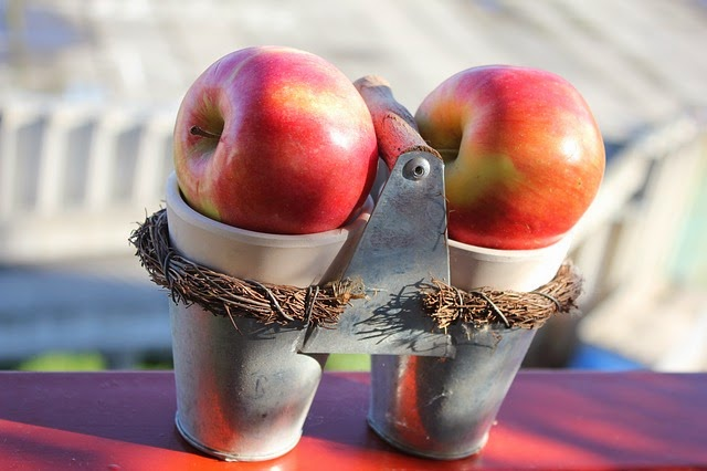 Apple Shakers | Becky Cooks Lightly #WeightWatchers #apples