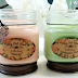 Ocotillo Southwest Champagne Apple And Mimosa Scented Jar Candles REVIEW