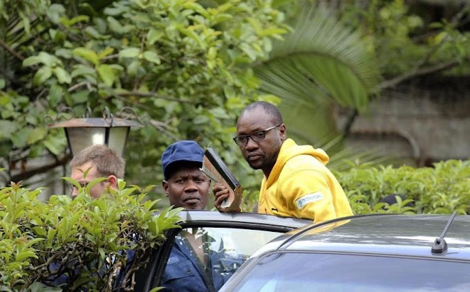 Stop the Persecution of Zimbabwean Citizens Demanding Accountability - Africans Rising