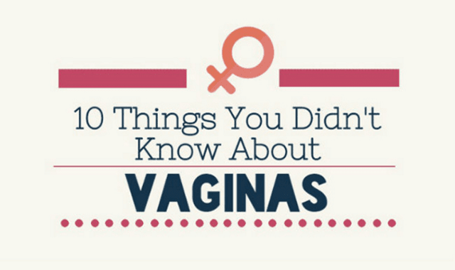 10 Things You Didn't Know About Vaginas