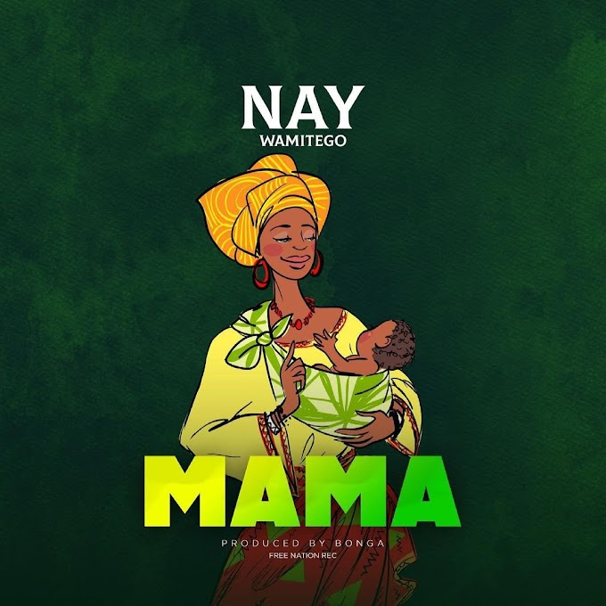 AUDIO | Nay Wamitego – Mama | Download New song