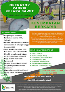 Lowongan Kerja Aceh PT Perkebunan Nusantara 1 Wilayah Aceh