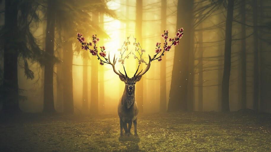Deer, Digital Art, 4K, #4.571
