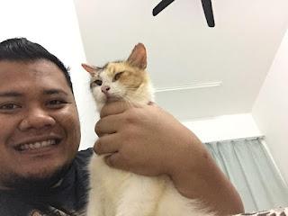 Tips Hilangkan Kuranp Kucing
