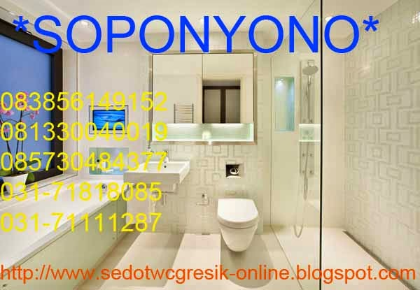 SEDOT WC/TINJA GRESIK
