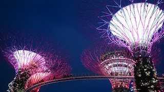 The Supertree Grove Singapore