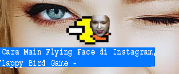 Cara Main Flying Face di Instagram, Flappy Bird Game -