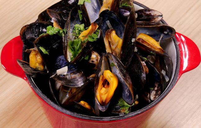 sea mussels