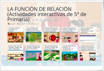 """""""10 Actividades interactivas para el estudio de LA FUNCIÓN DE RELACIÓN en 5º de Primaria"""""""
