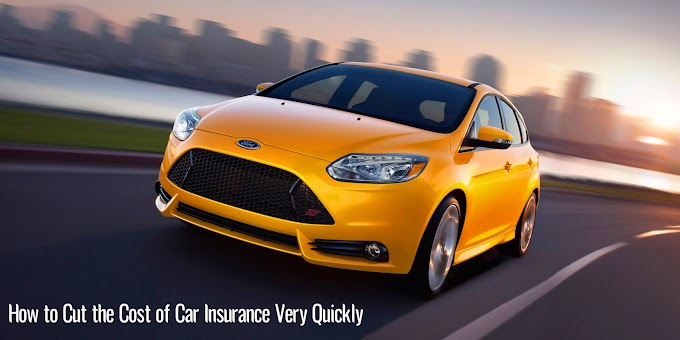 How to Cut the Cost of Car Insurance Very Quickly?