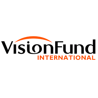 Job Opportunity at Vision Fund Tanzania, Senior Internal Auditor