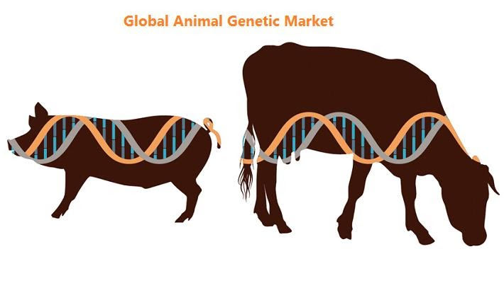 Increasing Awareness about Animal Genetic Disorders to Augment the Animal Genetics Market Growth