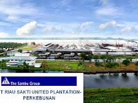Estimator PT. Riau Sakti United Plantations,Inhil Riau, Indragiri Hilir
