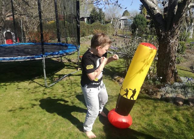 AKADEMIA ZWYCIĘZCY - sporty walki, aktywność ruchowa dla najmłodszych.