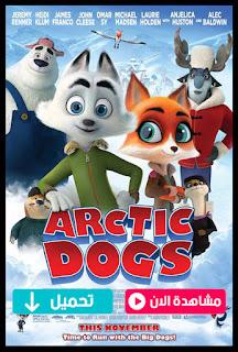 مشاهدة وتحميل فيلم Arctic Dogs 2019 مترجم عربي