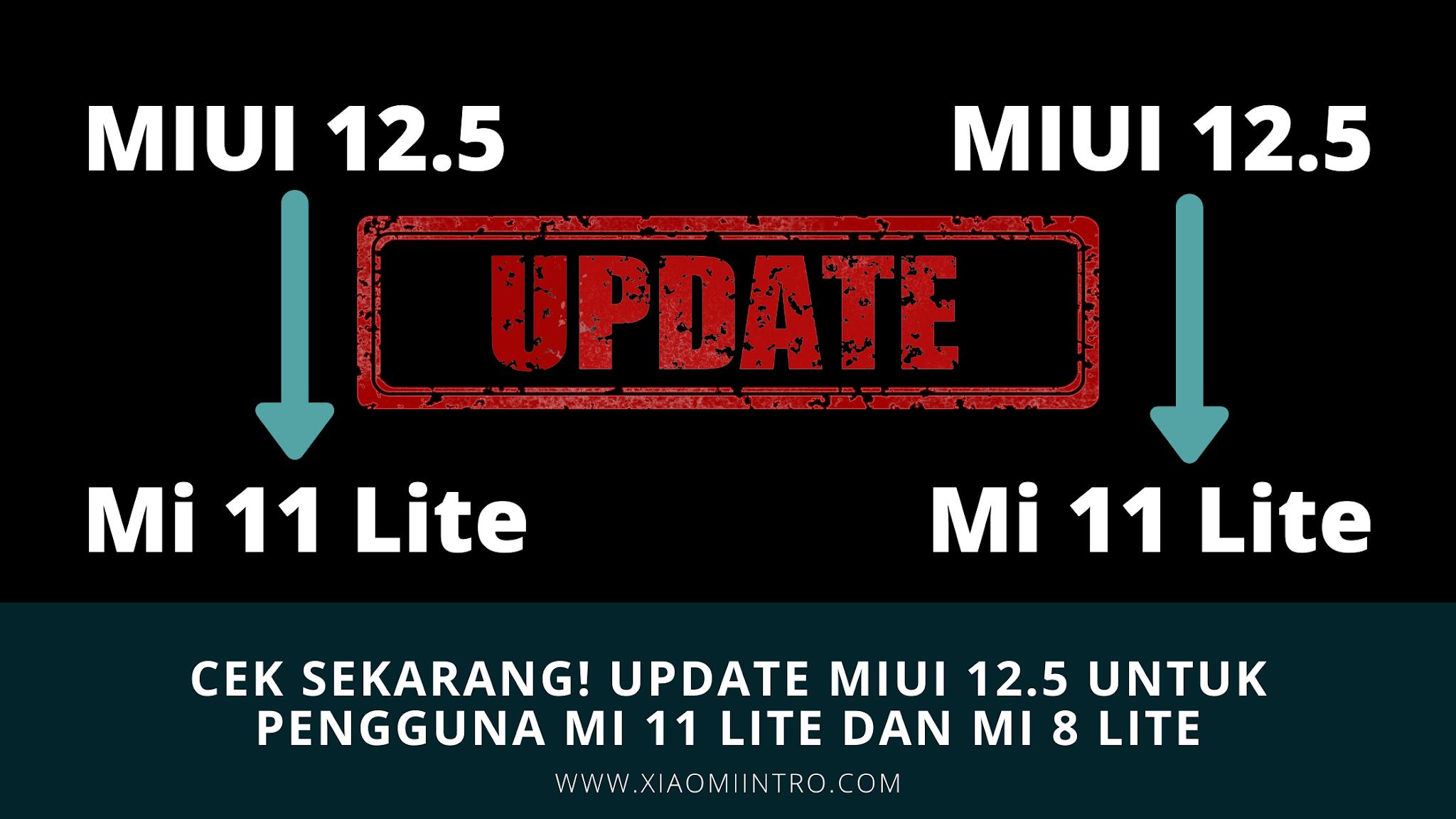 Cek Sekarang! Update MIUI 12.5 Untuk Pengguna Mi 11 Lite Dan Mi 8 Lite