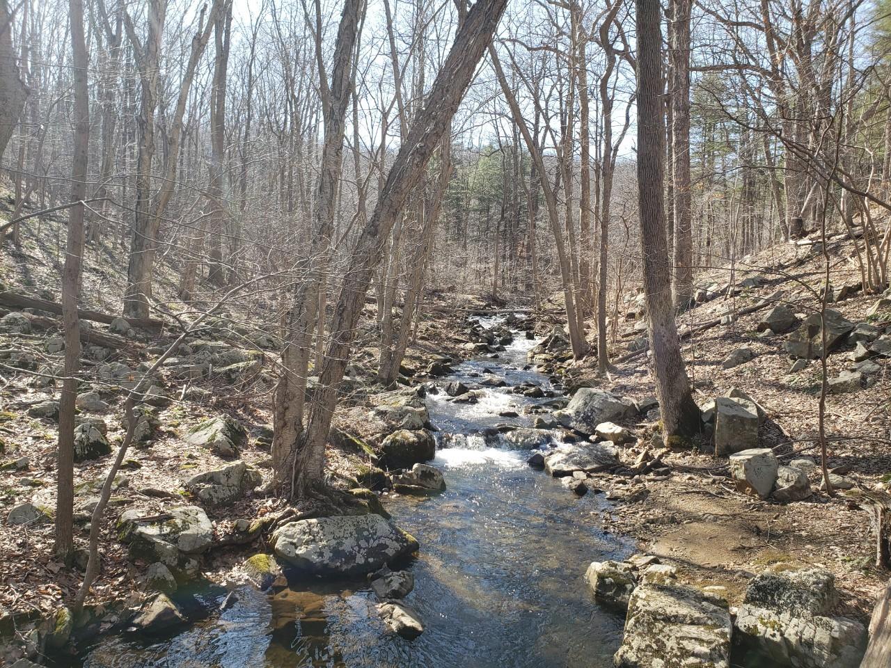 Brass Castle Creek Washington Township Warren County NJ