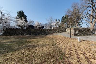 Iiyama Castle