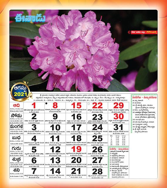 Eenadu Telugu Calendar August 2021
