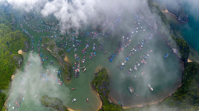Ha Long Bay, Cat Ba - Nature Masterpiece Seen From The Sky 1