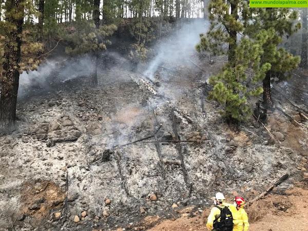 Estabilizado un conato de incendio declarado hoy en Puntagorda